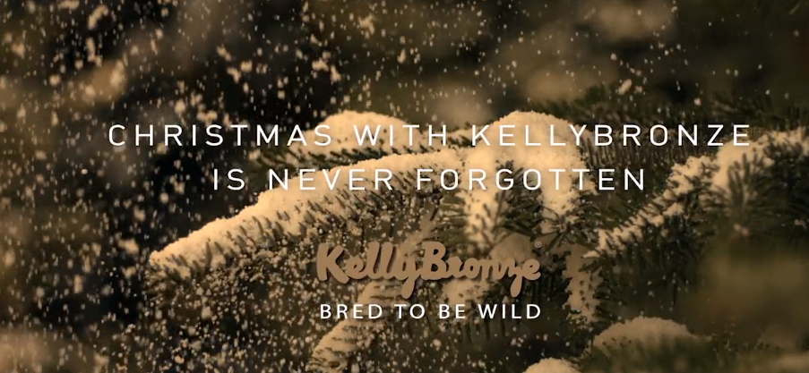 Christmas with KellyBronze is never forgotten